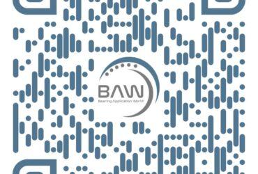 Nanol speaking at BAW event 26-28.10